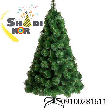 پخش عمده درخت کریسمس کاج نوک برفی
