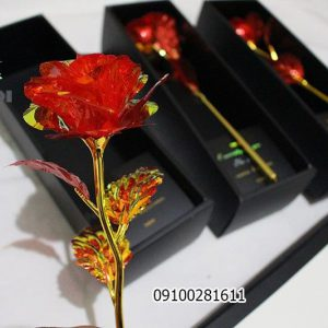 گل رنگین کمانی _ فروش عمده و جزیی