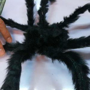 سفارش عمده انواع لوازم هالووین و لوازم شوخی انواع عنکبوت